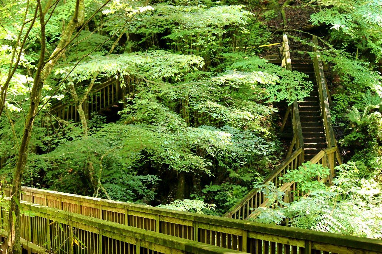 超ド迫力の「雄飛の滝」はスッカン沢最大の名瀑だ!