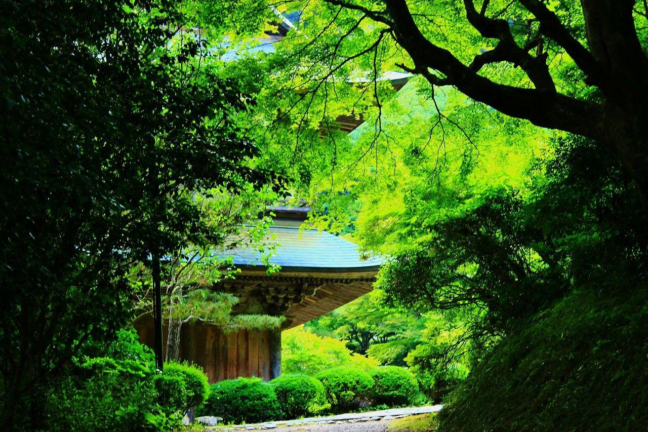 松尾芭蕉がどうしても訪ねたかった「雲厳寺」の謎?