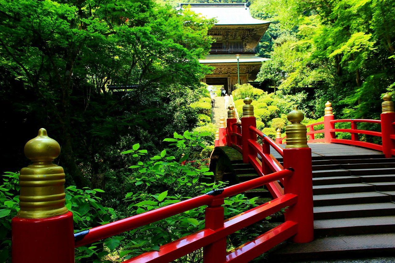 萌える青モミジ&竹林の世界!那須高原の絶景スポットはここ!