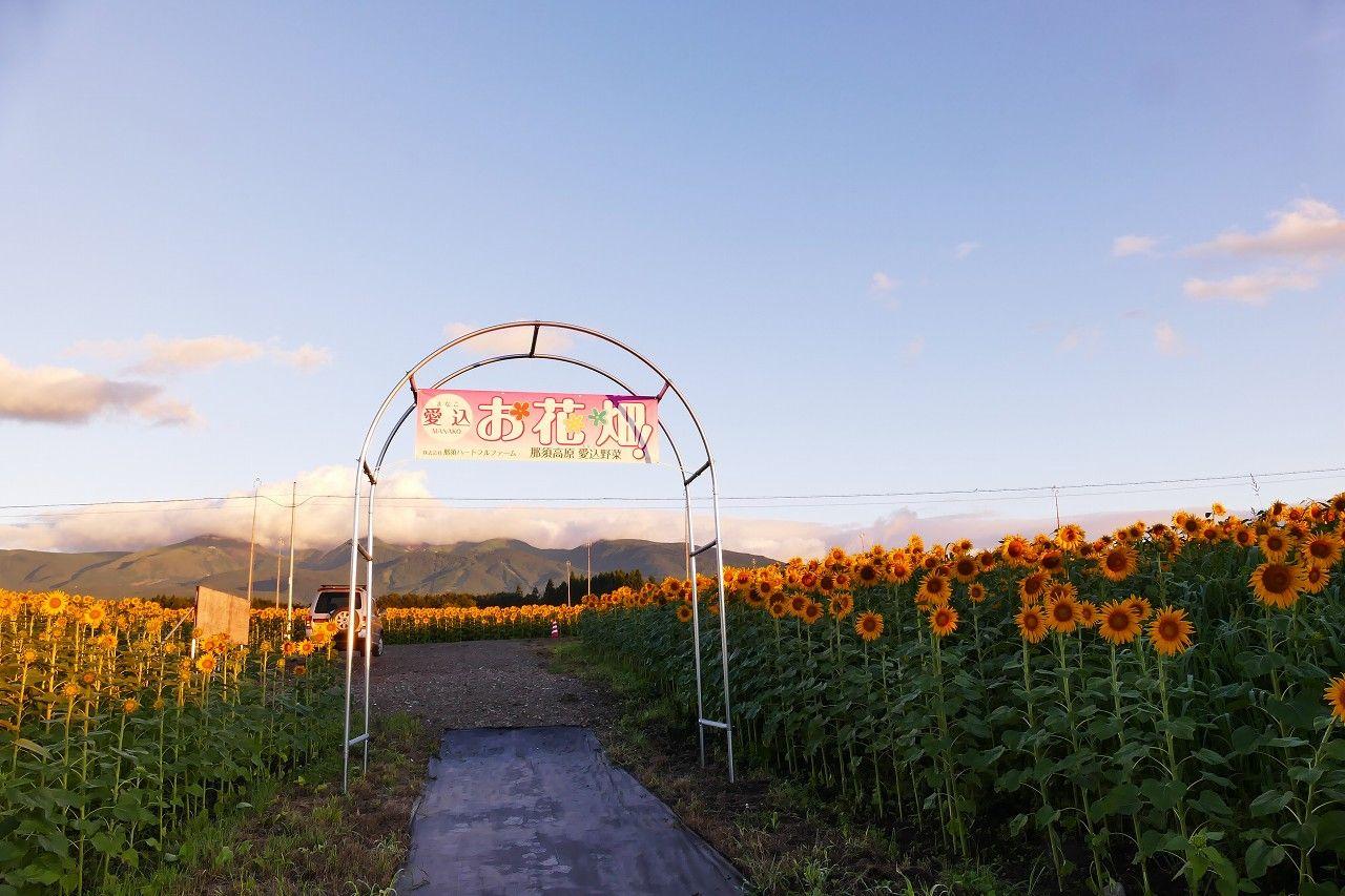 2カ所の展望台からは360°絶景のパノラマが楽しめる!