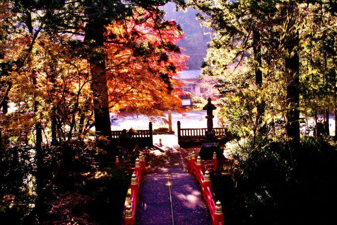 「雲厳寺」は那須髄一「紅葉」の名勝地で最強のパワースポット!