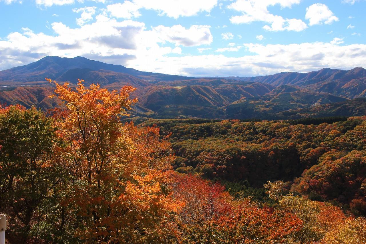 山岳道路ならではの絶景紅葉!秋がおすすめ