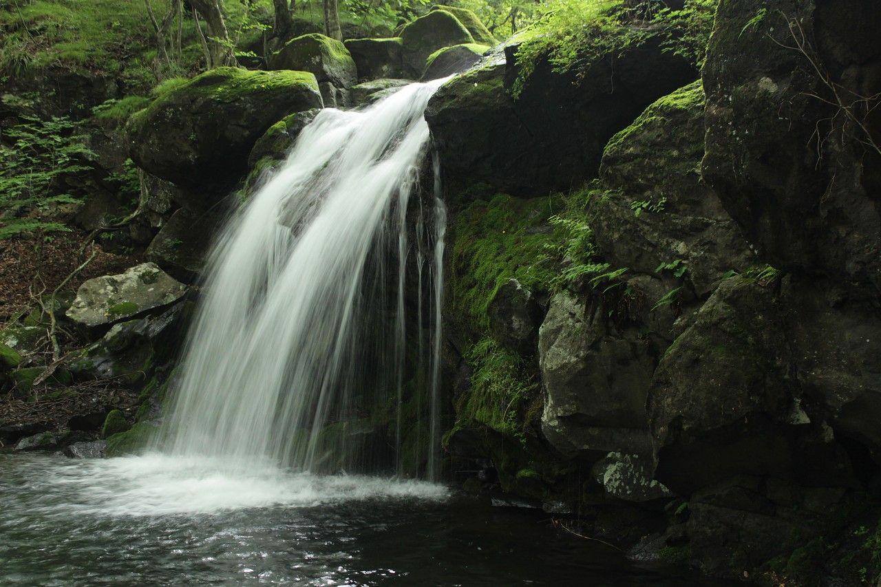 矢板「県民の森」の滝名はなぜか文学的!初心者OKの優しい滝と自然