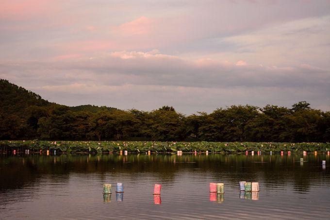 大沢の池の灯籠