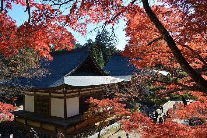 京都の紅葉はここから始まる。高雄「神護寺」