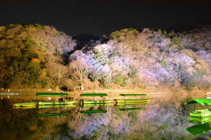 9.嵐山花灯路(ライトアップ)