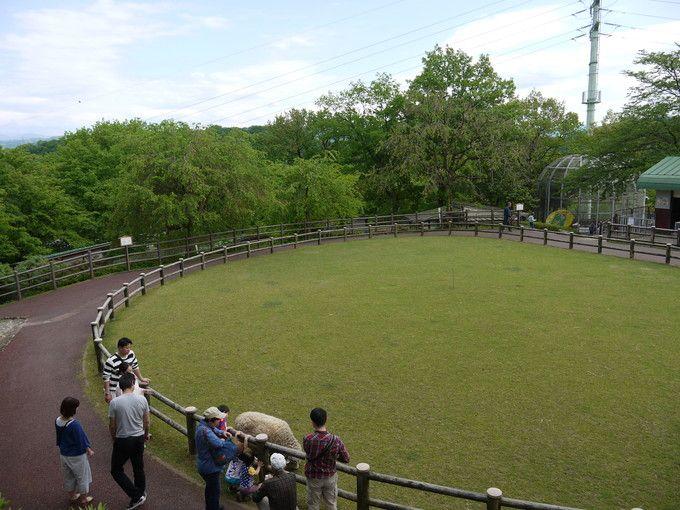 2.足羽山(あすわやま)公園