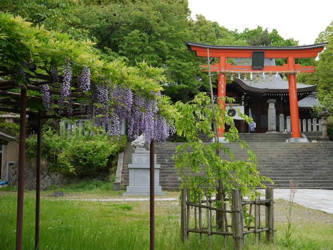 6.藤島神社