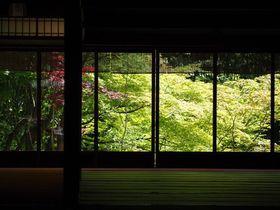 青もみじの風景も!京都「南禅寺」夏の見どころ&名所はここ