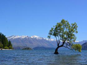 NZ南島「クイーンズタウン」と「ワナカ湖」の風景は、いつまでも思い出に残る!