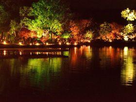 古都の秋の夜、幻想的な嵯峨野大覚寺「真紅の水鏡」に行ってみよう!