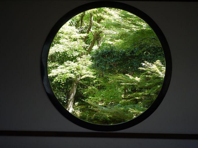 春から夏:緑に覆われる源光庵
