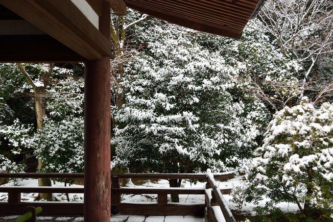 水墨画の世界が広がる冬景色