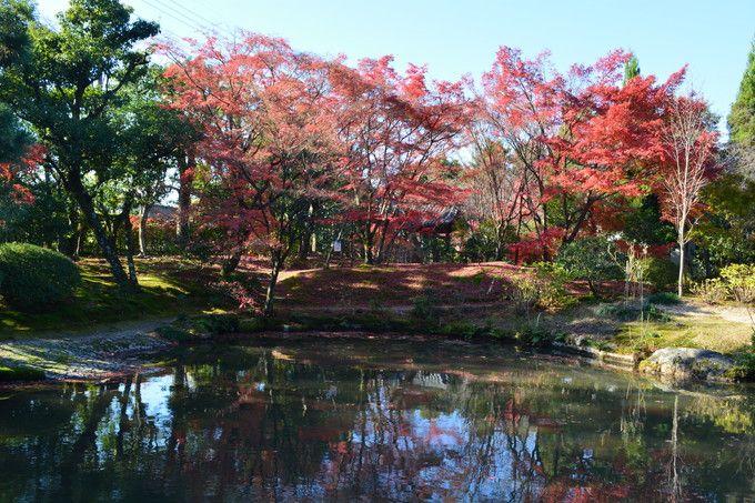真紅に染まる紅葉が見事な秋景色