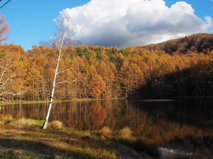 紅葉の景色