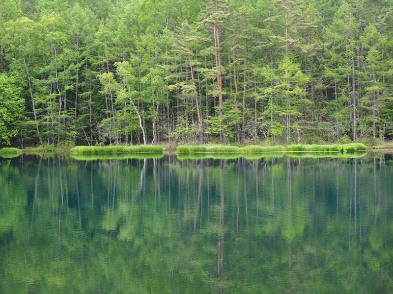 蓼科高原「御射鹿池」の四季は見る人の心をとらえる名風景