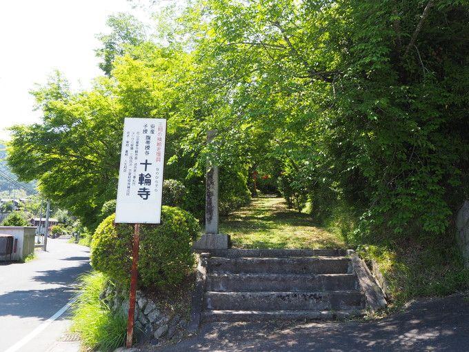 京都西山十輪寺