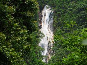 落差76m!滋賀県「楊梅の滝」ハイキングで大自然を感じよう