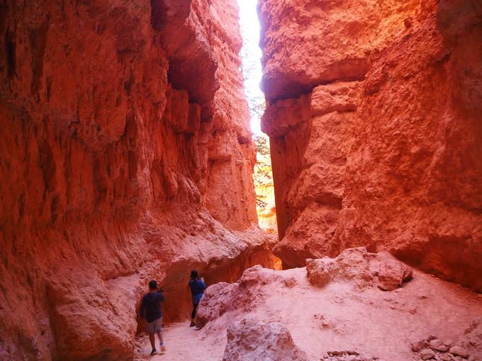 ナバホ・ループは1〜2時間程度のハイキング