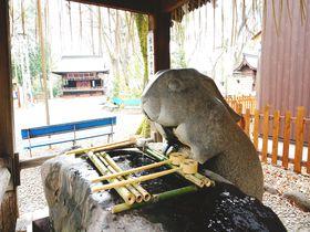 兎だらけのパワースポット・浦和「調(つき)神社」でツキを手に入れろ!