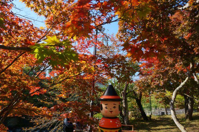 こけシーズンは紅葉シーズン!東北の小嵐山「中野もみじ山」