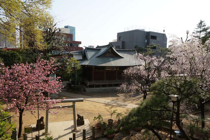 都内最古の富士塚に祀られる木花咲耶姫の美しさにあやかろう!