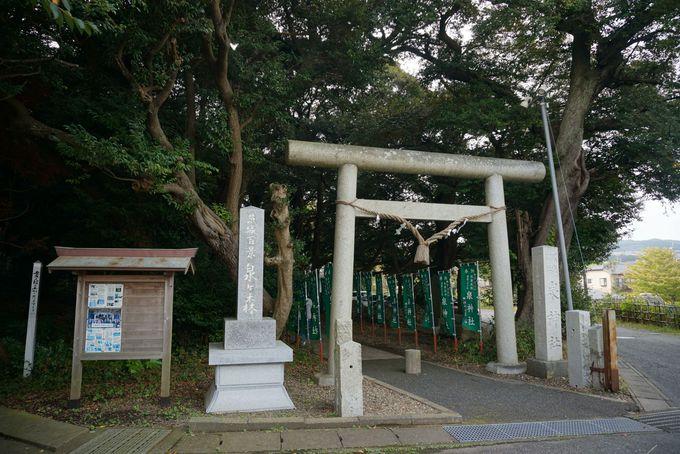 東京からは1時間半。JR大甕駅から徒歩10分!