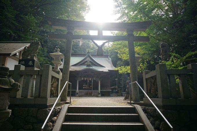 2000年以上前から静かにこの土地を護っていた日立最古の神社
