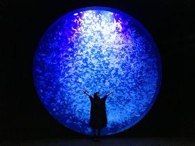 加茂水族館だけじゃない!山形県鶴岡でフォトジェニック女子旅