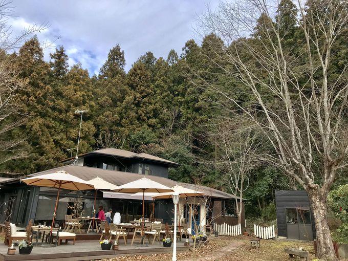 まるで絵本の世界?里山にかこまれた古民家カフェ