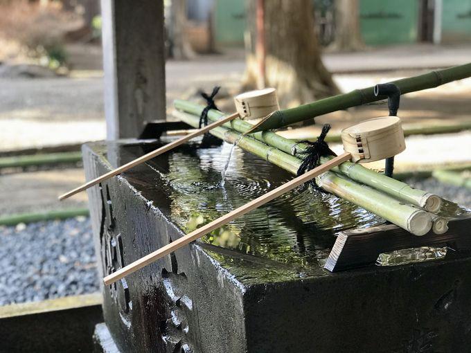 女性が活躍するアートな神社「ときわ台天祖神社」