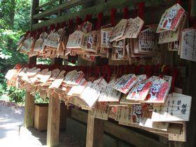 開運・金運UPに喜びの声も続々!鳥取「金持神社」