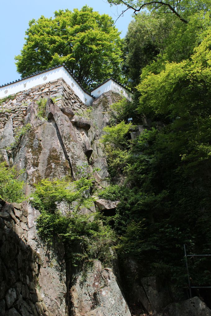 日本一高いところに現存天守を持つ山城・備中松山城