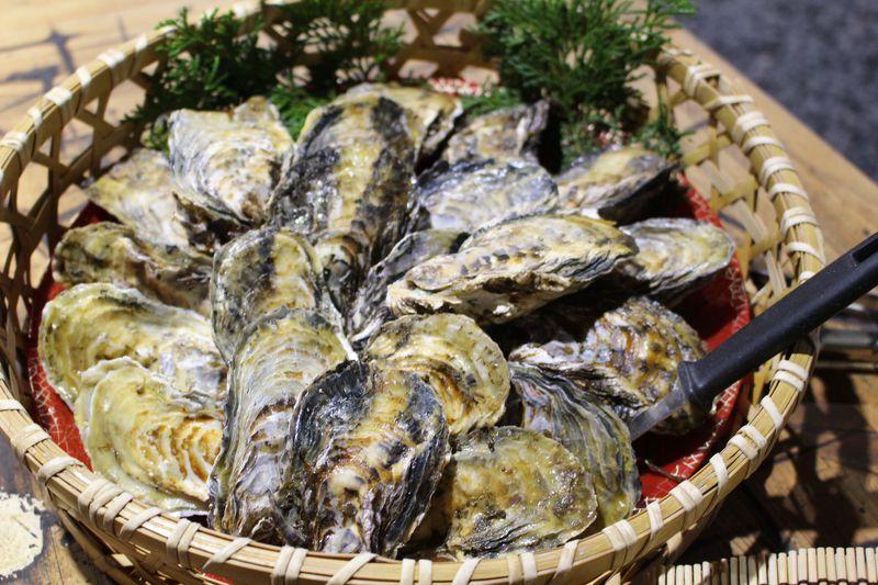 播州赤穂・坂越湾を望む「くいどうらく」で牡蠣三昧してチョ〜幸せ!