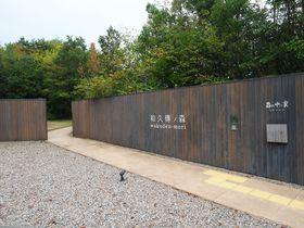 広大な森にレストランや美術館、工房も!京丹後「和久傳ノ森」