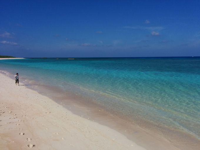 ニシ浜で波照間ブルーを満喫しよう!