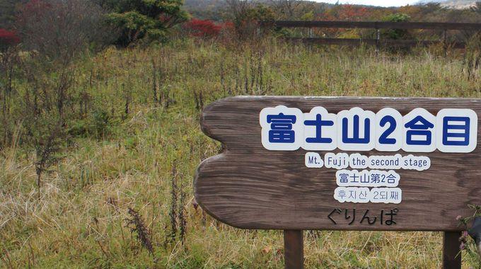 標高1200m、涼しい遊園地
