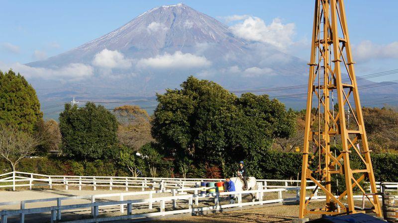 富士山が美しい!朝霧高原まかいの牧場でふれあい体験し、食を学ぼう!