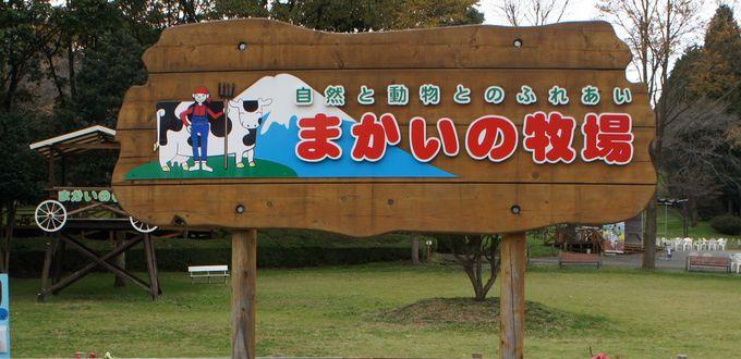 富士山がきれいにみえるまかいの牧場へ