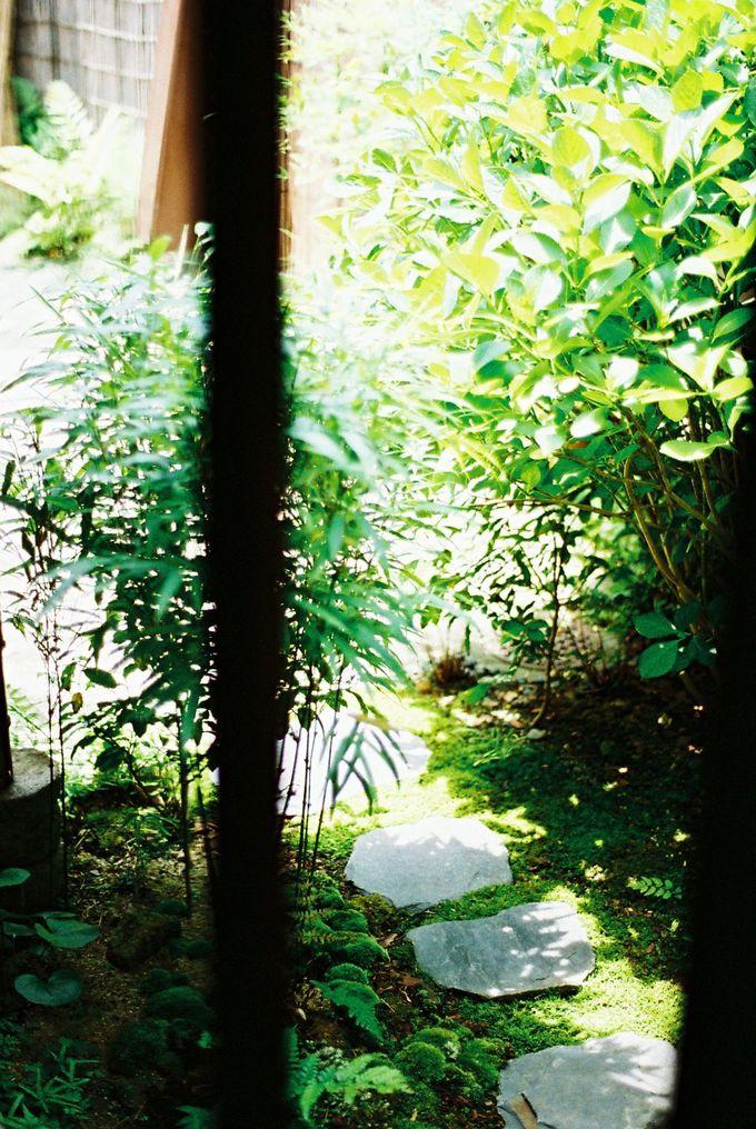 京都の街中で、縁側と庭がある宿は、癒し!