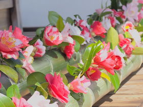 春の椿が美しい!京都・哲学の道すぐの「霊鑑寺」特別公開