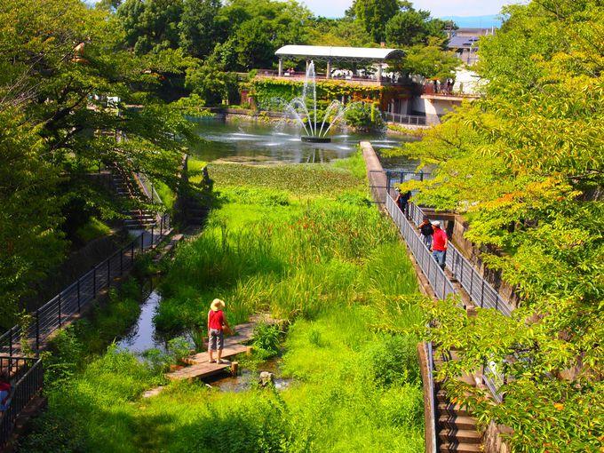 南禅寺船溜の噴水