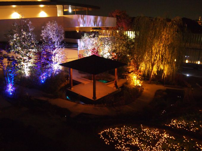 「京の里山ゾーン」ライトアップ