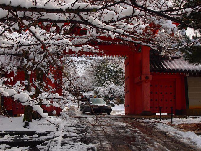冬ならタクシーで総門まで来られます!