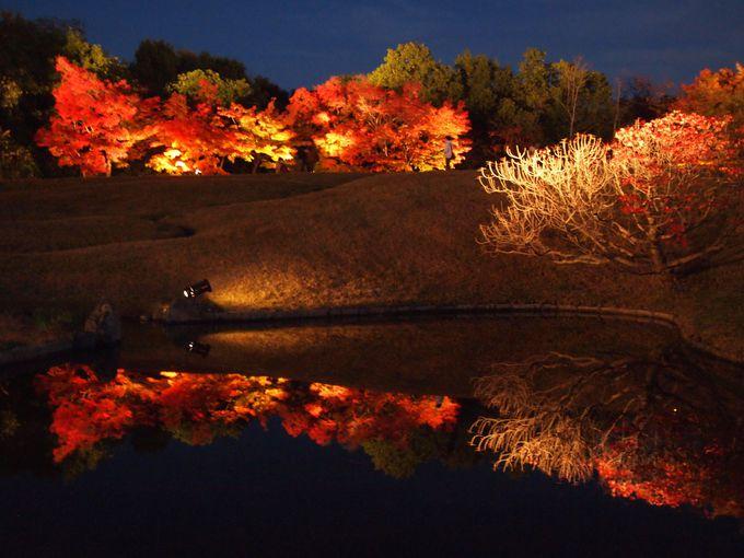 水面に映る紅葉が楽しめる