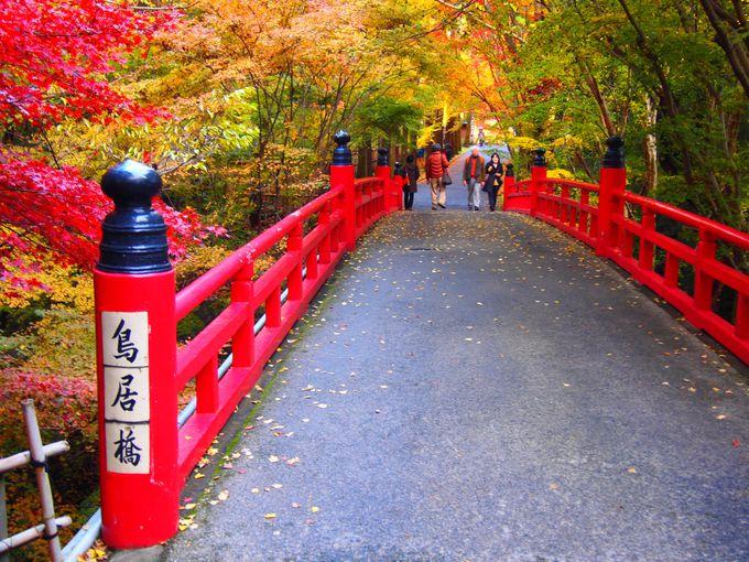 紅葉が美しい「鳥居橋」
