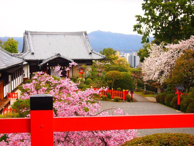 金閣寺から徒歩20分:建勲神社