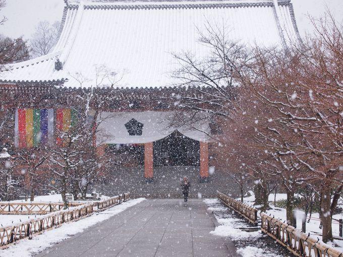 心静かに堪能したい、雪景色