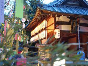 夕涼みにもおススメ!京都・高台寺「七夕会・夜間特別拝観」