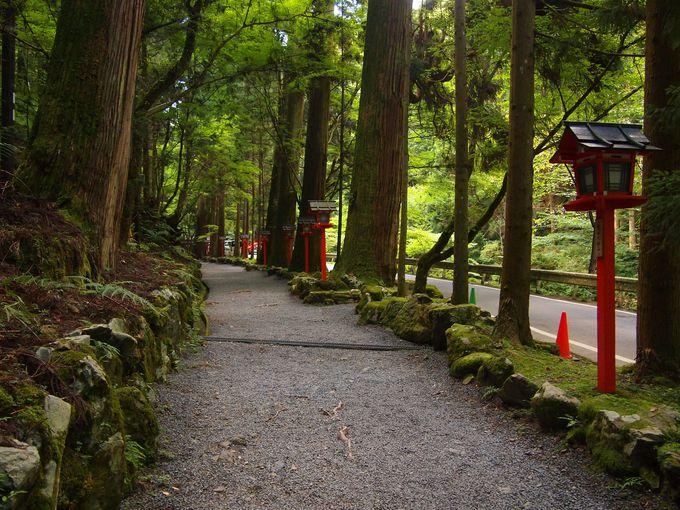 貴船神社・奥宮へ続く道